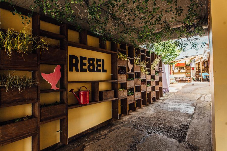 The-Rebel-Chicken-by-Daisy-Denam-2