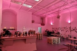 Wine Freedom Launches Festive Pop-Up!