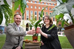 Summer schedule of pop-up events announced to welcome people back to Brindleyplace